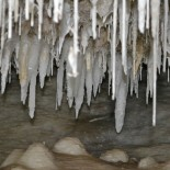 Clean White Stalactites In Dingo Cave