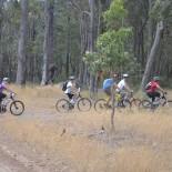 The mountain bike gang