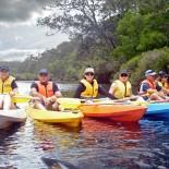 The Kayak Armada